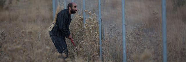 فیلم کوتاه حیوان به کارگردانی بهمن و بهرام ارک