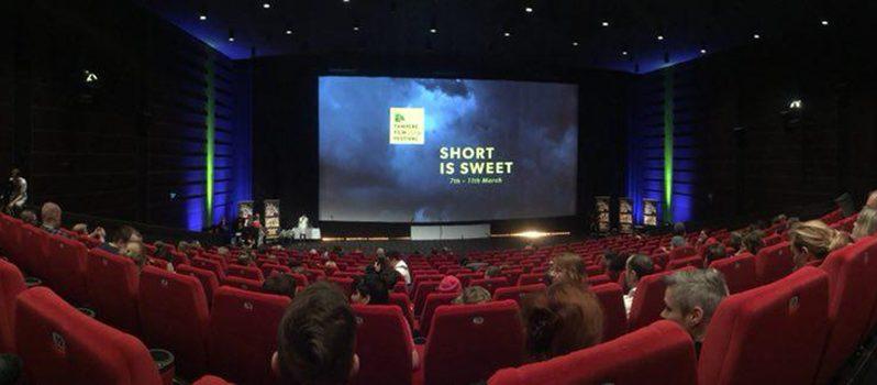 دیپلم افتخار جشنواره تامپره به فیلم کوتاه «طاغی» رسید