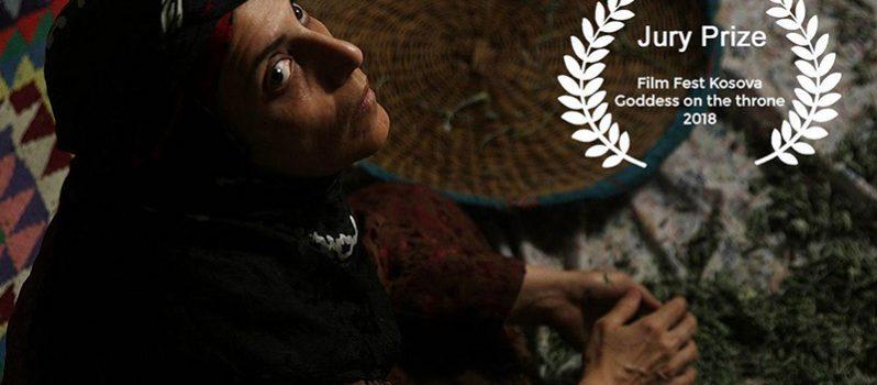 «فروزان» برنده جایزه ویژه هیات داوران جشنواره کوزوو